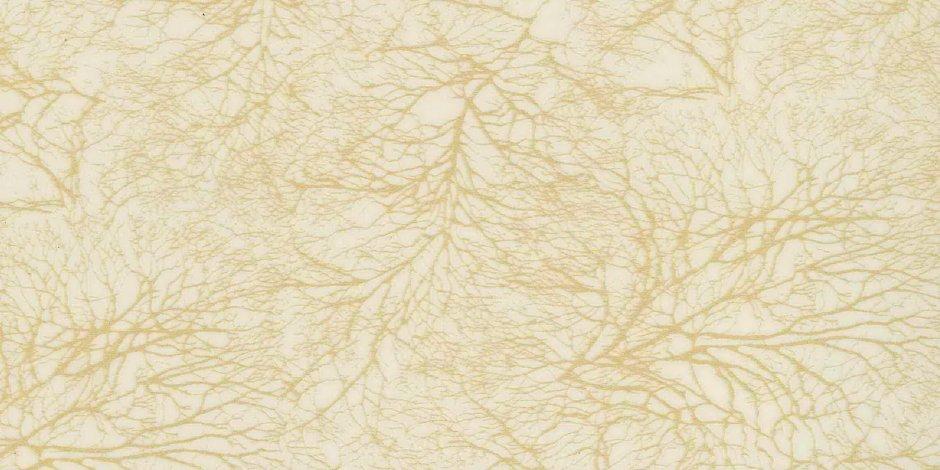 Золотое-Дерево