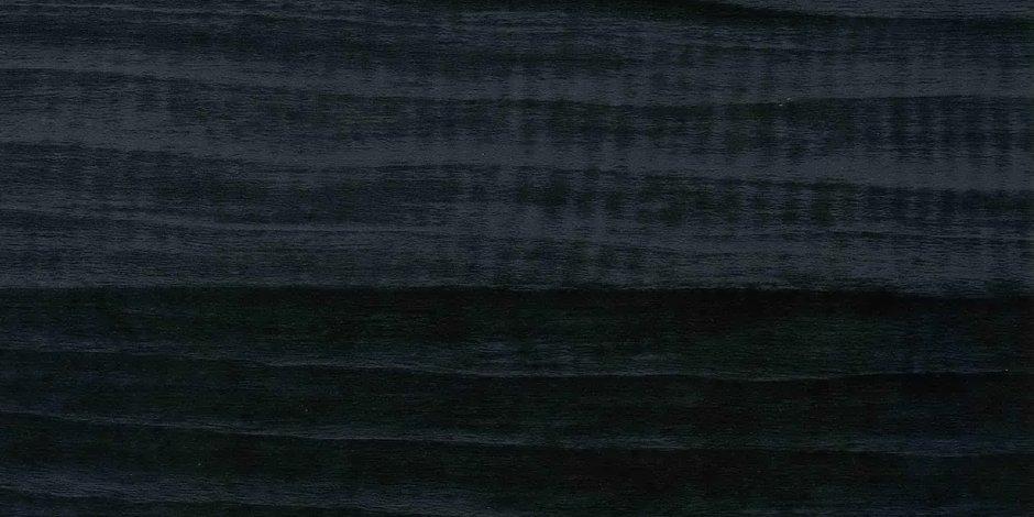 Ракушка-Черная-Глянец