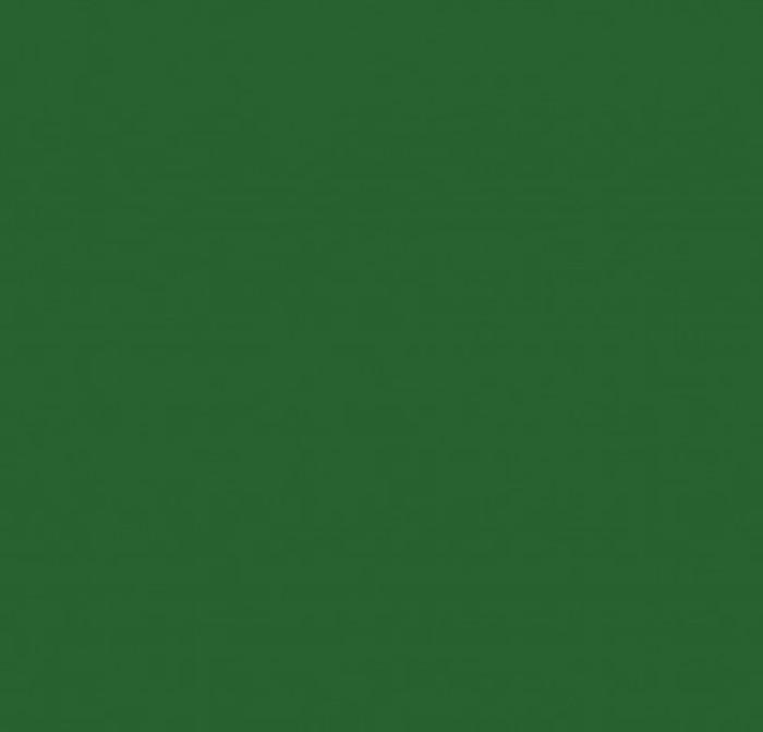 Зеленый глянец пластик