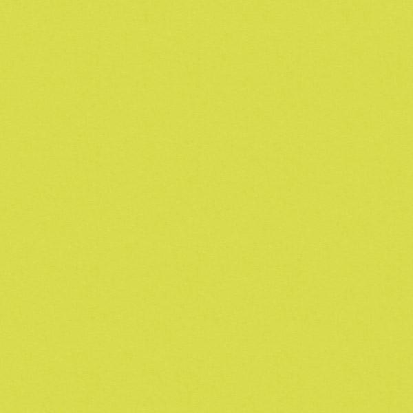 зеленый лайм 5519BS