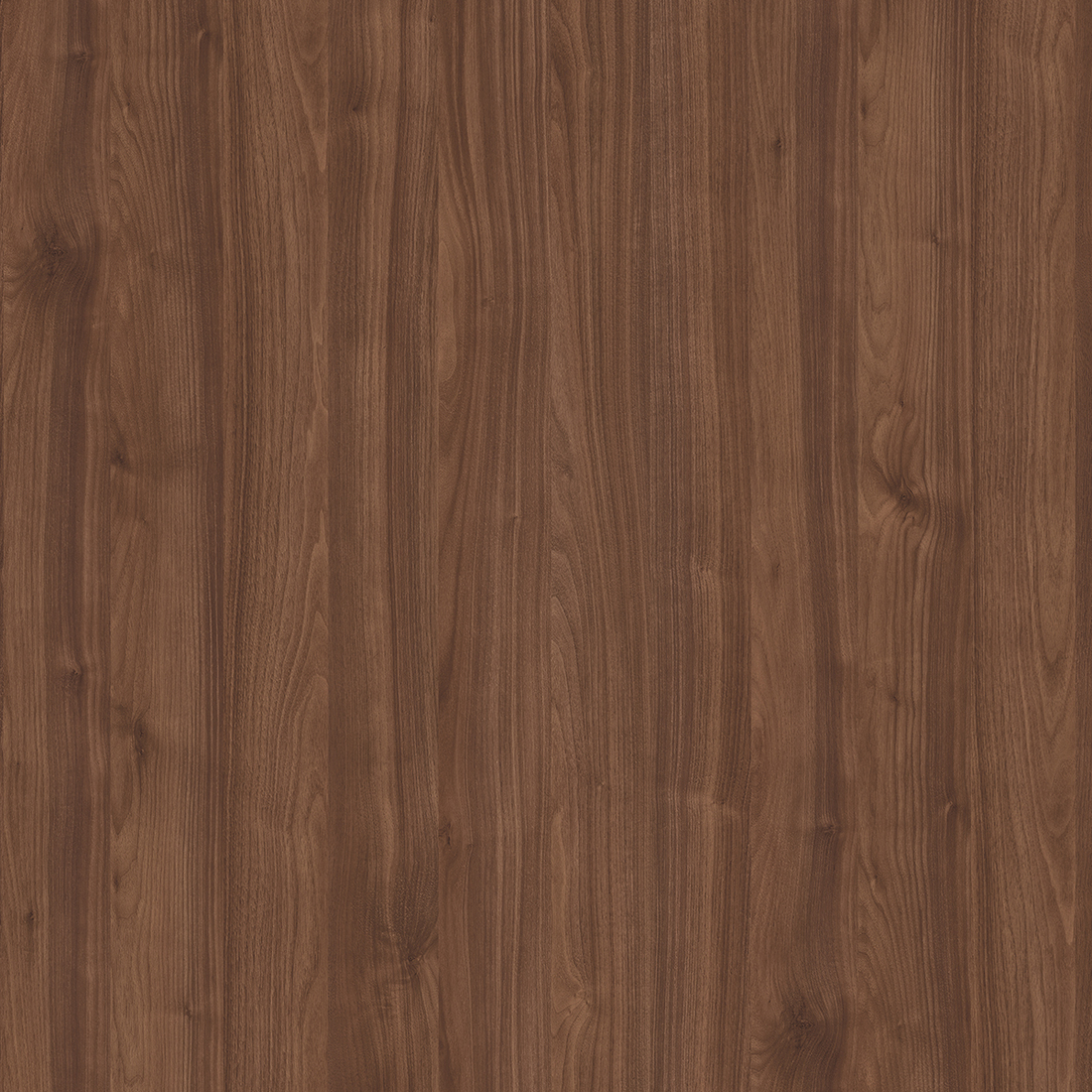 морское дерево винтаж K015PW (2)